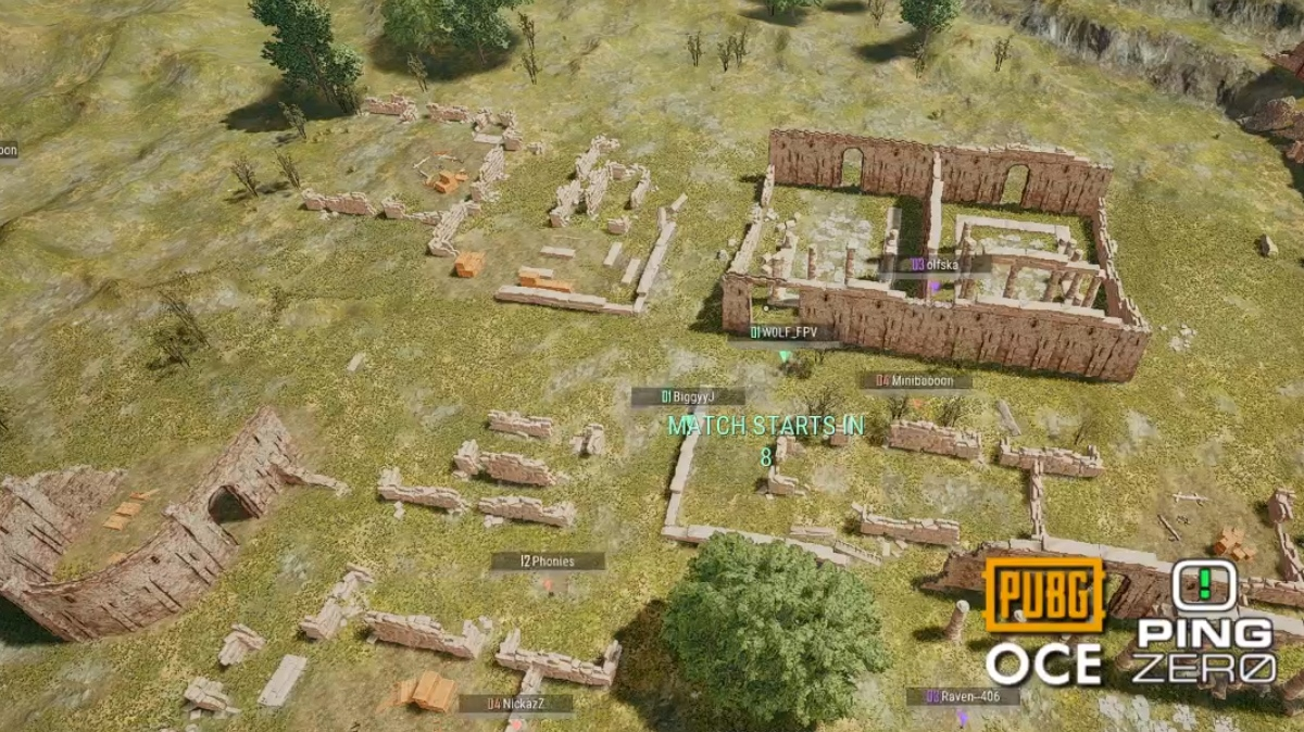 Check Out This Awesome Winner Winner Chicken Dinner Pubg: Ping Zero